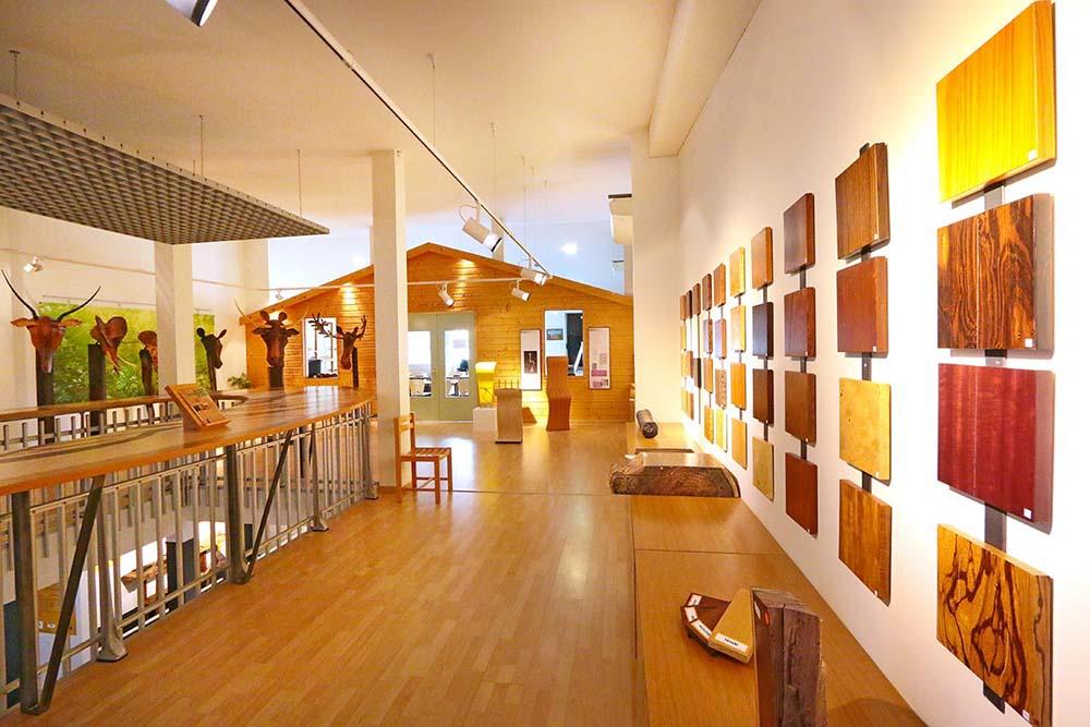 Xylothèque Musée du Bois de Revel